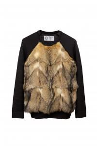 jersei-renard-patagonia