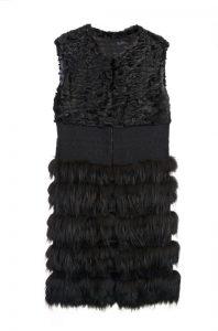 armilla renard i astraka negre la siberia